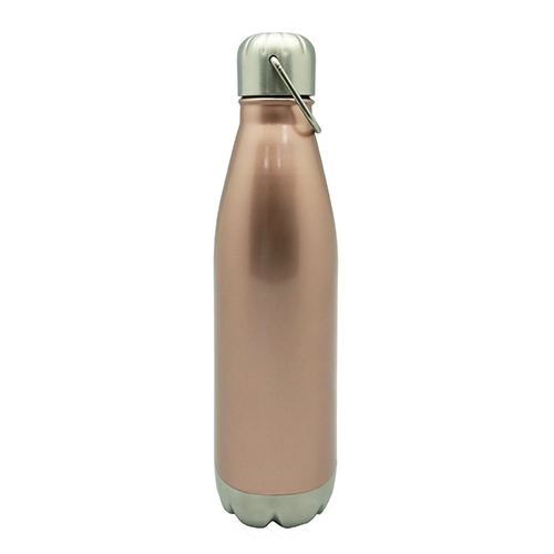 Stainless Steel Vacuum Sport Bottle With Handle 750ML